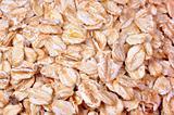 Oatmeal Detail