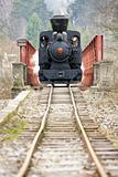 last day of service of CKD steam locomotive n. 5 (1.4.2008), Ciernohronska Railway, Slovakia