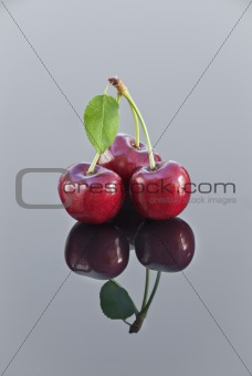 sweet cherry