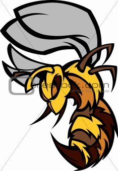 Bee Hornet Graphic Vector Illustration