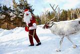 Santa's pet