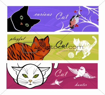 Cats.Cats.Cat's life banners
