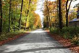 Quiet country road in autumn