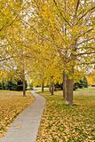 Autumn in Regina