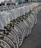 Long Row of Bicycles