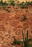 Tatacoa Desert in Colombia