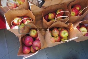 Fresh apples in grocery bags