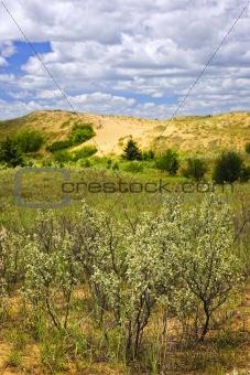 Sand dunes in Manitoba