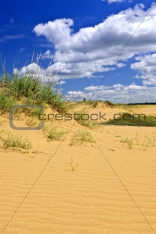 Desert landscape in Manitoba, Canada