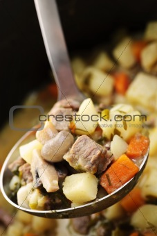 Beef stew in serving spoon