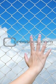 hand holding on chain link fence