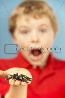 Young Boy Holding Plastic Spider