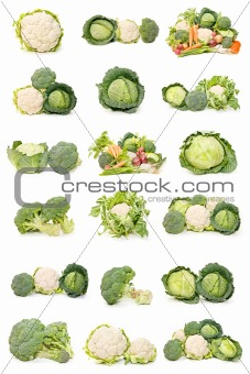 cauliflower, cabbage and broccoli
