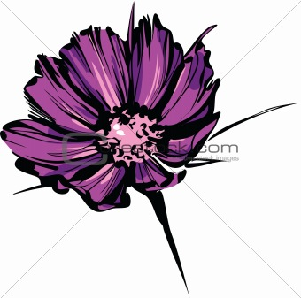 bright sketch of purple wild flower