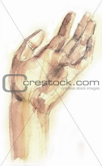 a raster picture of human part of body is a hand