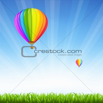 Grass And Two Hot Air Balloons