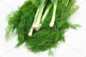 Fresh green dill and onion.