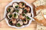 snails as french gourmet food