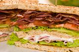 Two sandwich beautiful close-up shoot