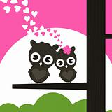 Enamoured owls