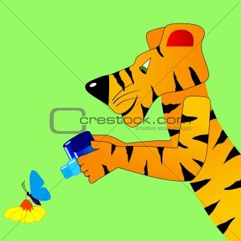 Tiger makes a snapshot