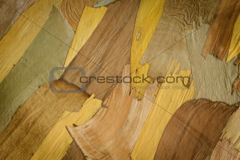 Dried bark background