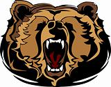 Grizzly Bear Mascot Head Vector Graphic