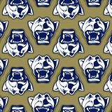 lion face background pattern