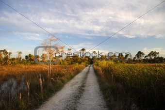 Backcountry Trail in the Everglades
