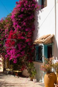 Mediterranean charm