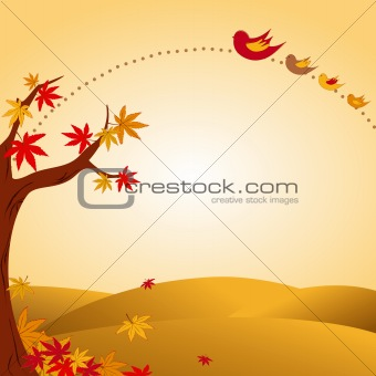 autumn landscape tree colorful leaf and bird