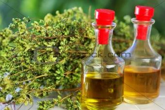 Olive  oil, vinegar and oregano bouquet.
