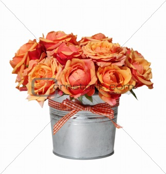 Bouquet of orange roses in the pot