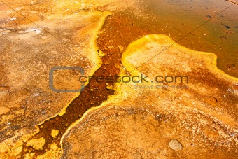 Upper Geyser Basin of Yellowstone