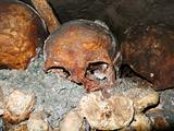Catacombs Skull