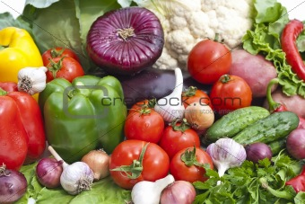 The group of vegetables