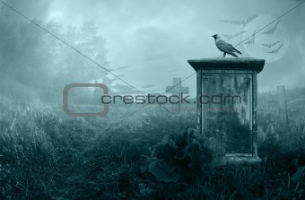 Crow on a gravestone