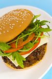 Hamburger with cheese and mixed tomato and salad
