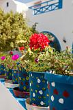 Geranium pots, Santorini, Greece