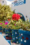 Geranium pots, Santorini, Greece