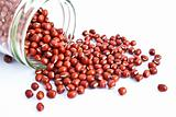 azuki beans in a bottle isolate on white background