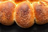 The homemade buns