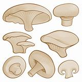 Woodcut mushrooms