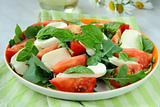 Traditional Italian Caprese Salad mozzarella with tomatoes and basil