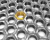 Golden screw nut among silver ones