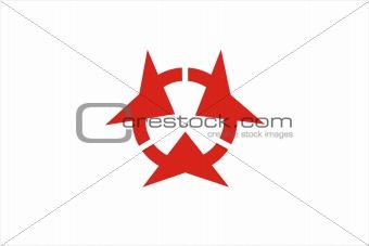 oita flag