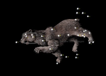 Constellation The Great Bear (Ursa Major)