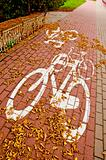 urban bicycle track in autumn