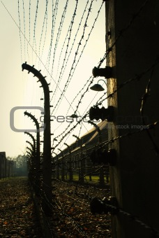 Oswiecim Fence (Auschwitz)