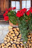 geranium flowers on a bavarian hut
